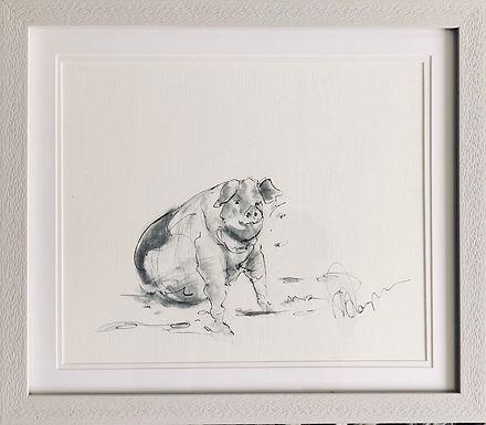 Pig For Sale Gloucestershire Old Spot Framed