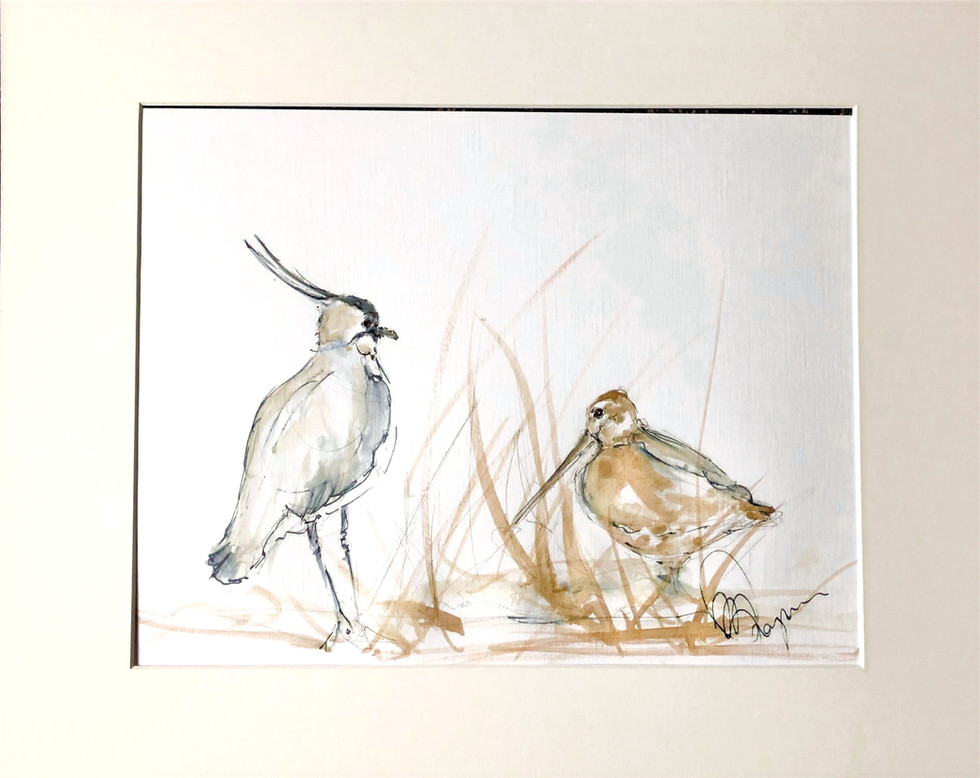 Wading Birds of the UK