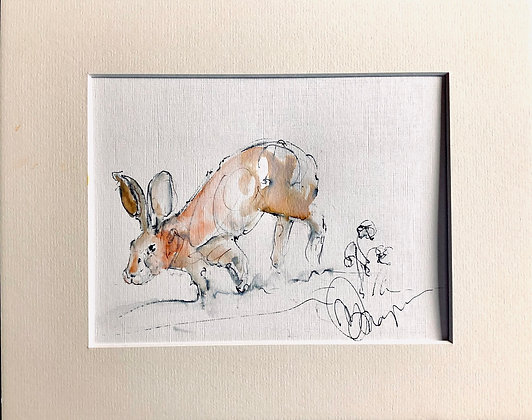Hare Drawing For Sale
