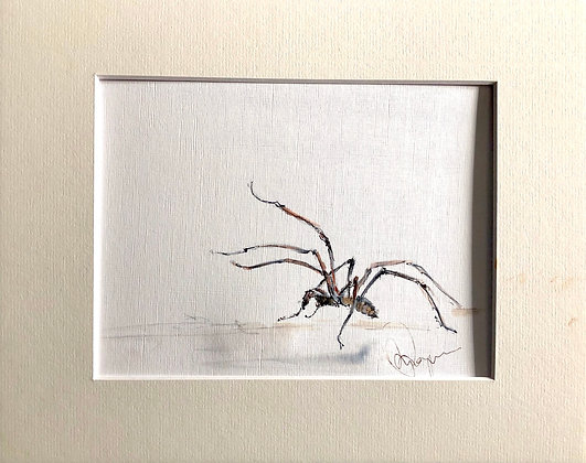 House Spider Drawing For Sale
