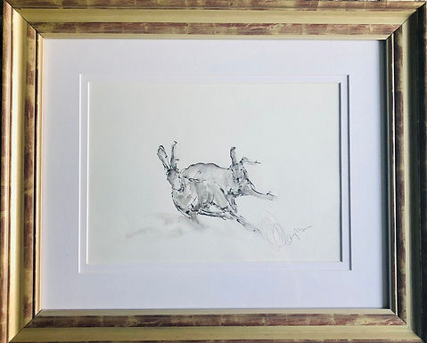 """Hare For Sale (Bespoke Frame) """"Racing Hare"""""""