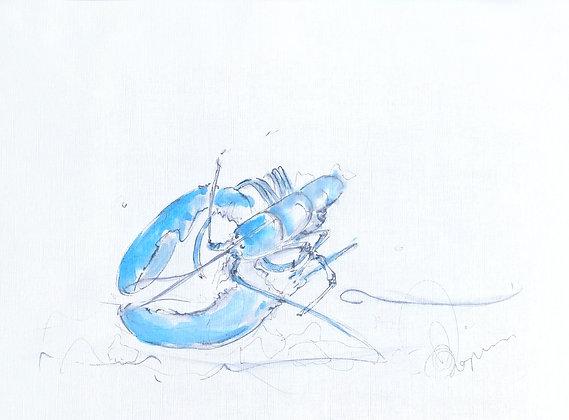 Blue Lobster 1