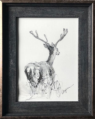 Deer For Sale Original Framed Ready To Hang  Original
