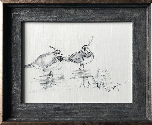 Lapwings For Sale Framed Ready To Hang  Original