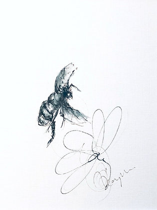 From my Collection of Bumble bees  no 2 | Drawing for Sale