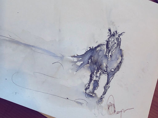 Horse sketches (£35.00 each)