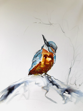 Original Kingfisher For Sale