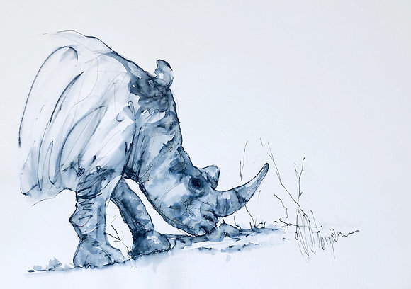 Black Rhino - endangered species - Original sketch