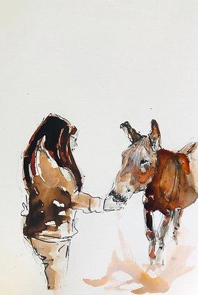 Donkey For Sale (feeding the donkey)