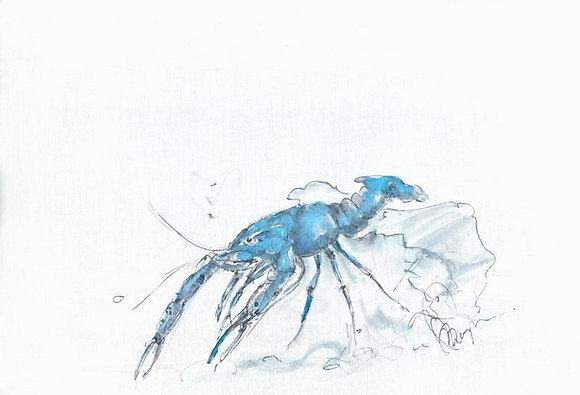 Blue Lobster 2 Framed