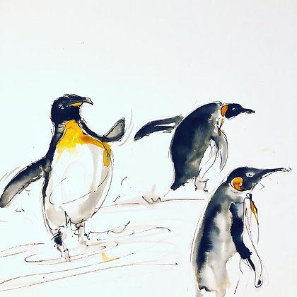 Penguins For Sale