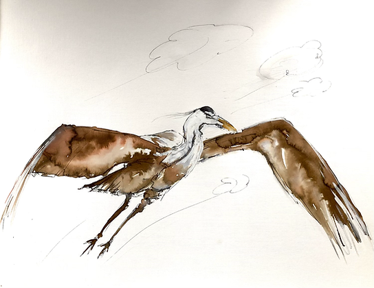 Original Heron in Flight For Sale