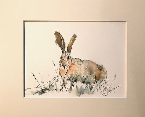 Hare Drawing For Sale (Original)