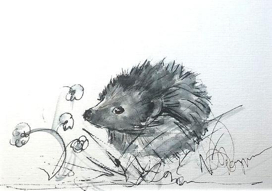 Hedgehog 3 RESERVED