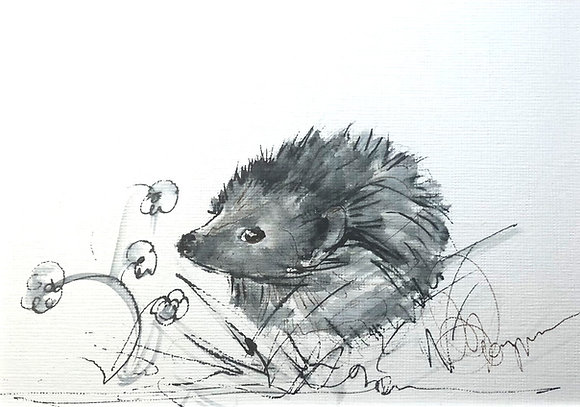 Hedgehog 3 RESERVED