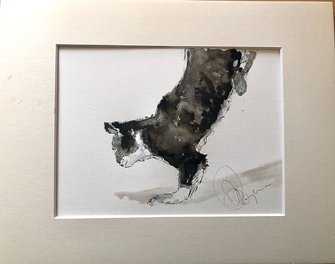 Cat Drawing For Sale (mounted unframed)