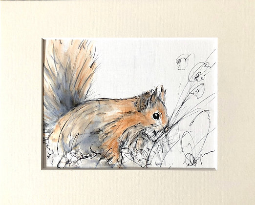 Red Squirrel 2 | Drawing For Sale