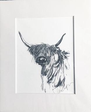 Cow from the Common  A5 Size Print