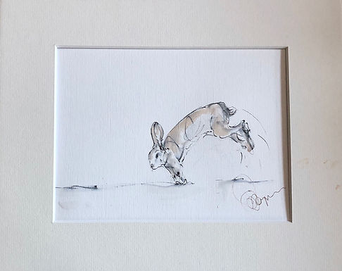 """Get Set"" Hare Drawing For Sale"