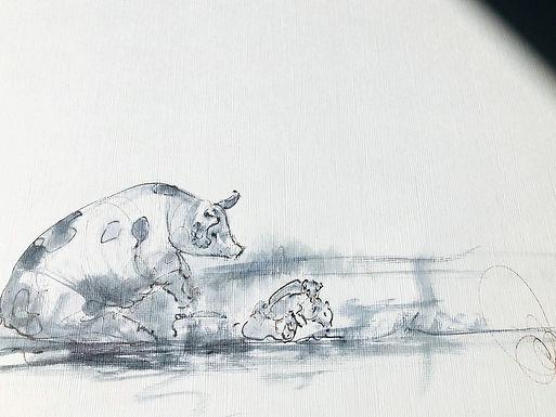Mum and baby pigs