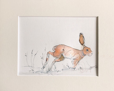 Hare Drawing For Sale - Original Artwork