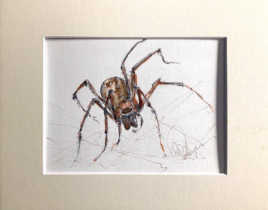 Spider Drawing For Sale