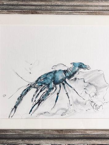 Blue lobster for sale