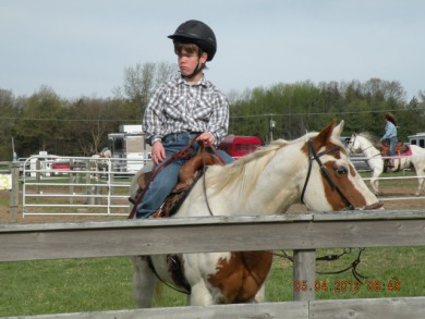 ohs14H & Open Horse Show