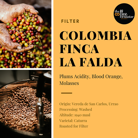 Colombia Finca La Falda
