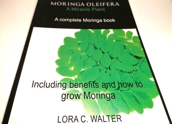 "Buch "" Moringa Oleifera A Miracle Plant"""