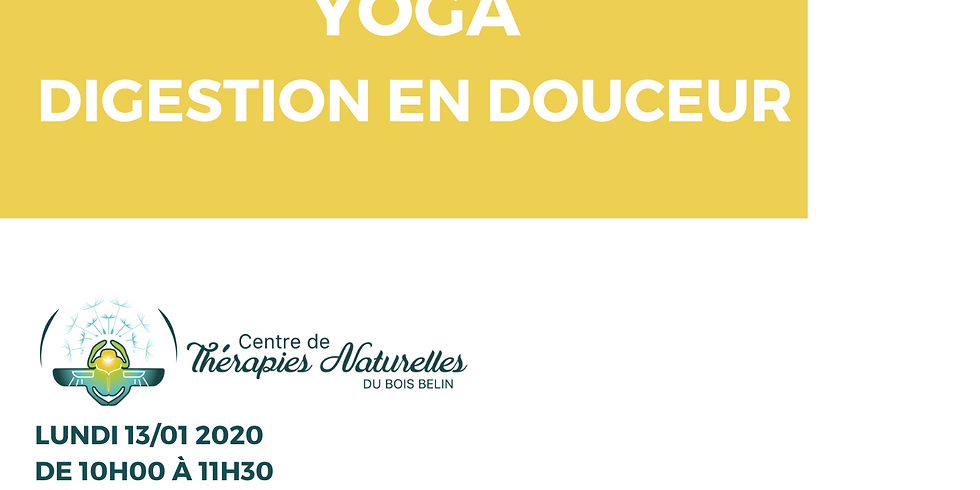 Ateliers YOGA à thèmes : yoga digestion