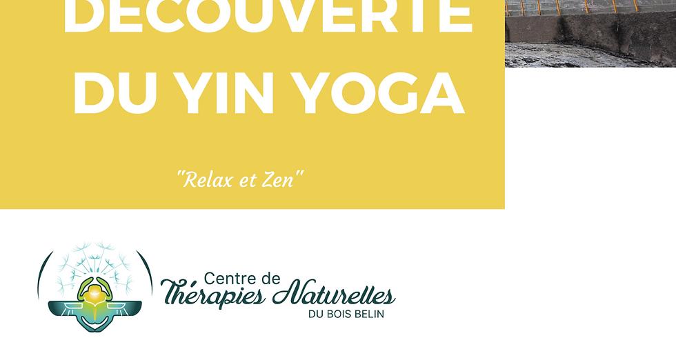 Ateliers YOGA à thèmes : découverte du yin yoga
