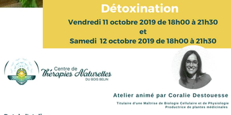 Atelier d'automne et détoxination - 2ème de la série Retrouvez le goût des Simples Samedi 12 octobre 2019