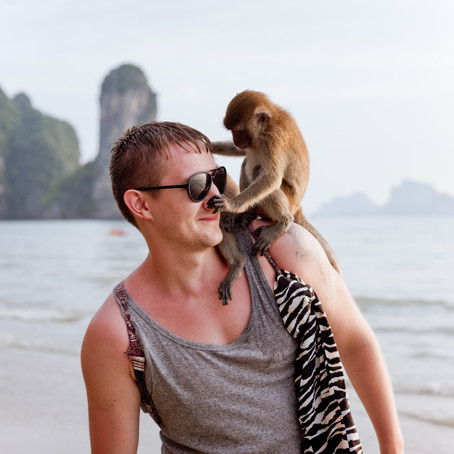 3 Simple Tools to Bring You More Peace (Swimming in the Ocean and Playing With Monkeys Counts).
