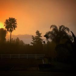 Sunrise over the ranch _) #sunrise #horses #horseranch #beautiful #magic #paradise #swedeequine