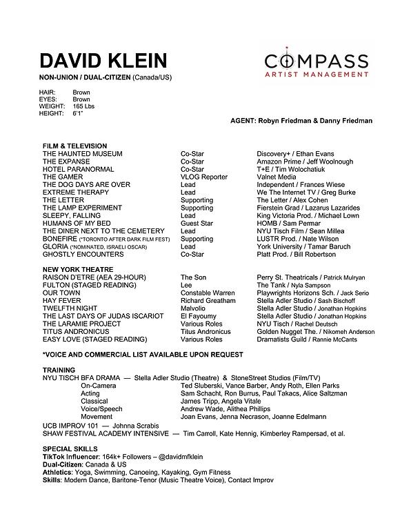 DAVID KLEIN - RESUME