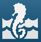 HONUMI,活魚水槽メーカー,水槽設備,活魚水槽,生簀水槽,生簀販売,活魚水槽販売,業務用生簀,生け簀水槽,いけす水槽,イケス水槽,生簀活魚水槽,生け簀活魚水槽,生簀設備,生け簀水槽設備,アクアリウム水槽,海水池,海水魚飼育,海水魚無換水,海水魚初心者,学校用水槽,無換水水槽,無換水飼育,凄い生簀,仔魚育成,陸上養殖,閉鎖循環式陸上養殖