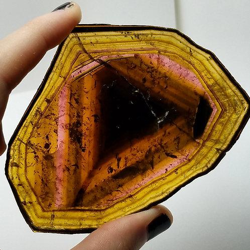 Large Triangle Liddicoatite Madagascar Tourmaline Slice