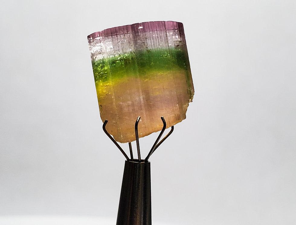 Multicolor Thick Tourmaline. 7.7 Grams.