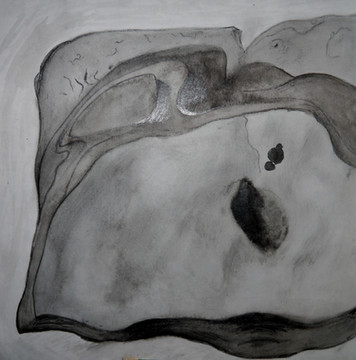 Edward Weston Stone study