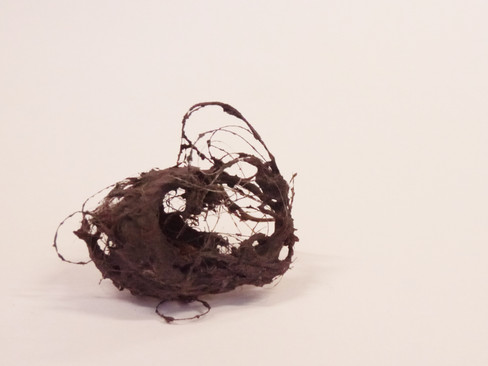Dust & Hair