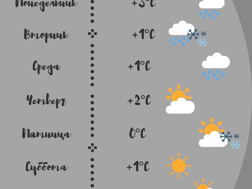 Прогноз погоды на следующую неделю в Печенгском районе☀