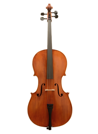 Rental_Cello_Masked.png