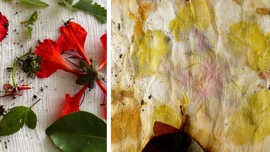 Impressões botânicas - Origens