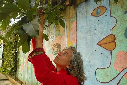 Fernanda Mascarenhas colhendo folhas de abacate para a obra Impressões do Rio Verde