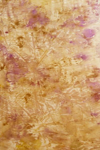 Botanical print of lent