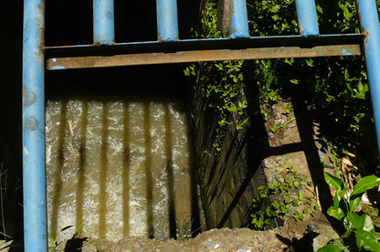 RioVerdeFernandaMascarenhas12.jpg