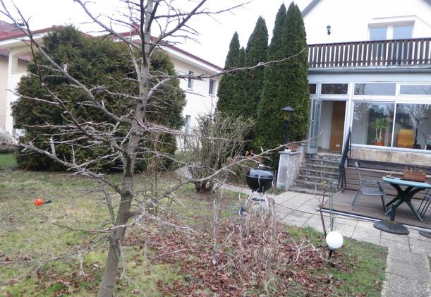 Schwarzlackenau Garten und Terrasse