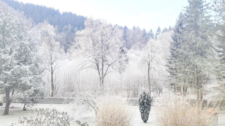 Mercats de Nadal d'Alemanya II