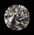 Python Fabric.png